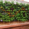 Pallet Decorate Ideas for Your Garden