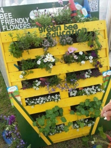 Vertical Garden Using Pallet
