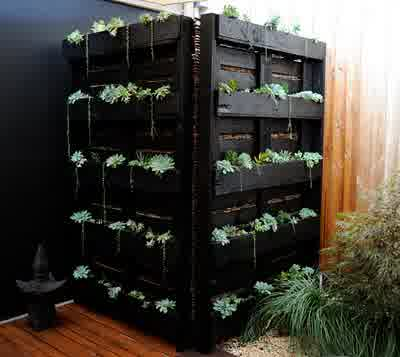 Pallet Mounted Plants