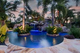 unique pool design with palm tree